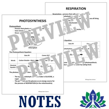 Photosynthesis & Cellular Respiration Cloze Notes Activity NGSS MS-LS2-3