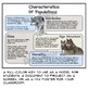 Population Characteristics Guided Graphic Notes