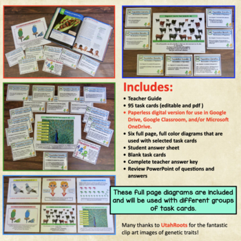 Population Genetics Hardy Weinberg Task Cards