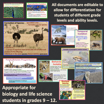 Population Genetics, Hardy Weinberg, and Speciation PowerPoint and Notes