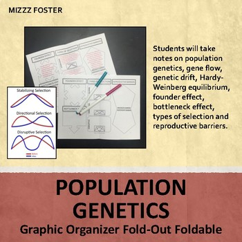 Population Genetics: Selection, Speciation Differentiated Graphic Organizer