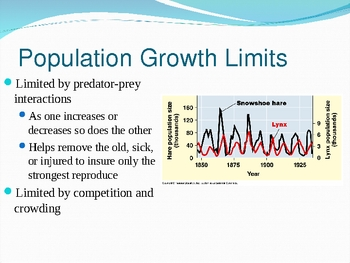 Population Growth PowerPoint