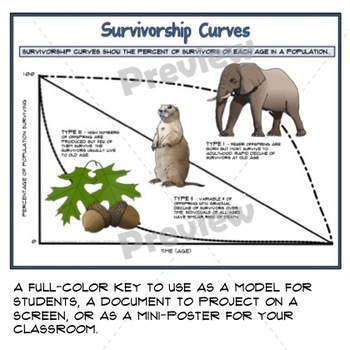 Population Survivorship Curves Guided Graphic Notes