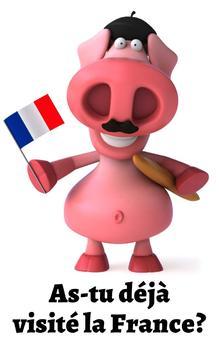 Porctastique (French Edition)