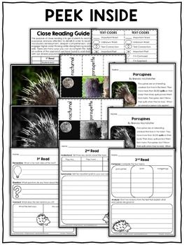 Close Reading Passage - Porcupine Activities