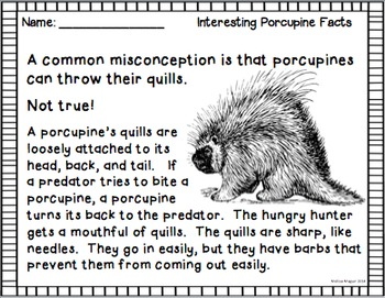 Porcupines - Fact and Fiction - A Common Core Book Study