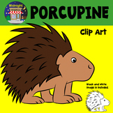 Porcupine Zoo Animals Clip Art