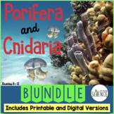 Porifera and Cnidaria Bundle | Printable and Digital Distance Learning