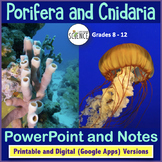 Porifera and Cnidaria Powerpoint | Printable and Digital Distance Learning