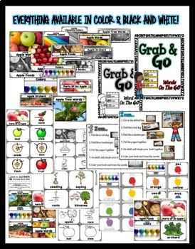 Portable Word Wall and Little Books: Apples