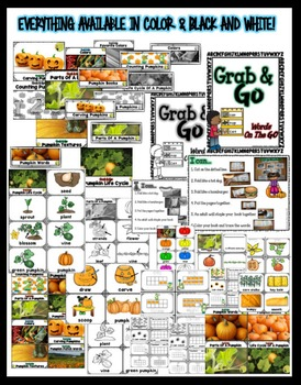 Pumpkin Word Walls: Portable Word Wall & Little Books, Fall Word Walls
