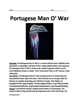 Portugese Man of War  - Informational Article Questions vocabulary
