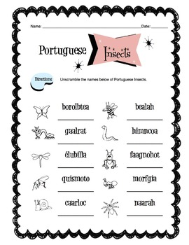 Portuguese Insects Worksheet Packet