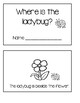 Positional Word Book - Where is the ladybug?