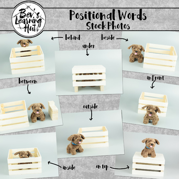 Positional Words Stock Photo Bundle