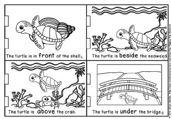 Positional turtle LITTLE BOOK(50% off for 48 hours)