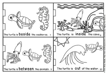 Positional turtle LITTLE BOOK