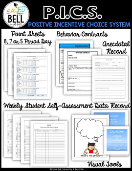 Positive Behavior System