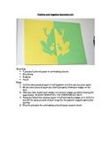 Positive and Negative Symmetry Math Art