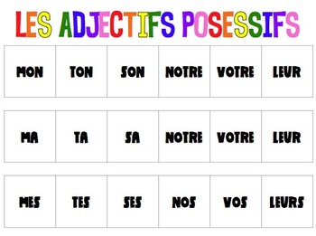 Possessive Adjective & Adjective Agreement Game in FRENCH
