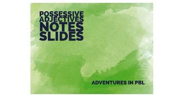 Possessive Adjectives PowerPoint