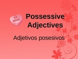 Possessive Adjectives and Showing Possession Lesson
