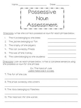 Possessive Noun Assessment