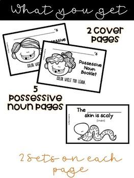 Singular Possessive Noun Coloring Booklet