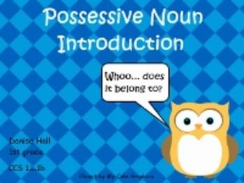Possessive Noun Introduction