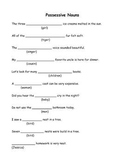 Possessive Noun Practice Pages!