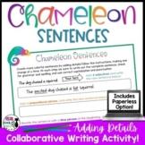Expanding Sentences | Elaboration Practice with Adding Details
