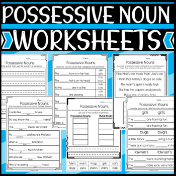 Possessive Noun Worksheets