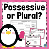 Possessive and Plural Nouns Task Cards
