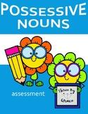 Possessive Nouns Assessment