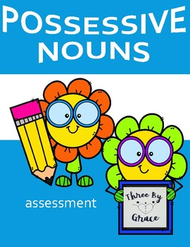 Possessive Nouns Assessment