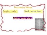 Possessive Nouns Flipchart/Unit