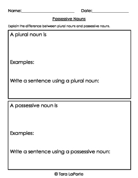 Possessive Nouns L3.2d