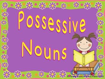 Possessive Nouns - Power Point & Activities/Assessments