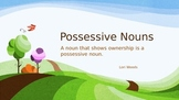 Possessive Nouns PowerPoint for teaching and practice