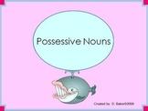 Possessive Nouns Practice Power Point Presentation