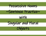 Possessive Nouns - Practicing in Sentences