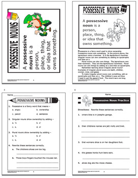Possessive Nouns Activities + COMPLETE Lesson and Expository Writing Practice