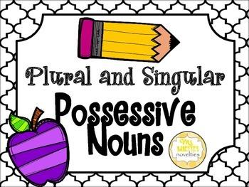 Possessive Nouns: Singular and Plural