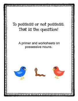 Possessive Nouns: To possess or not possess!