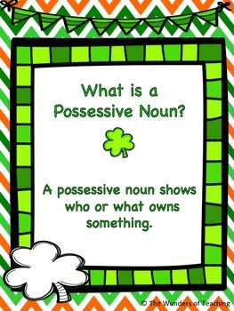 Possessive Nouns anchor charts and worksheet
