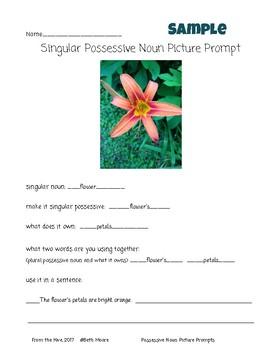 Possessive Nouns- singular and plural possessive noun picture prompts