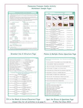 Possessive Pronouns Combo Activity Worksheets