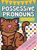 Possessive Pronouns Pets Task Cards
