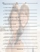 Possessive Pronouns Scrambled Sentences Worksheet