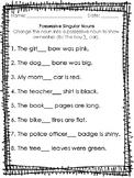Possessive Singular Nouns Worksheet